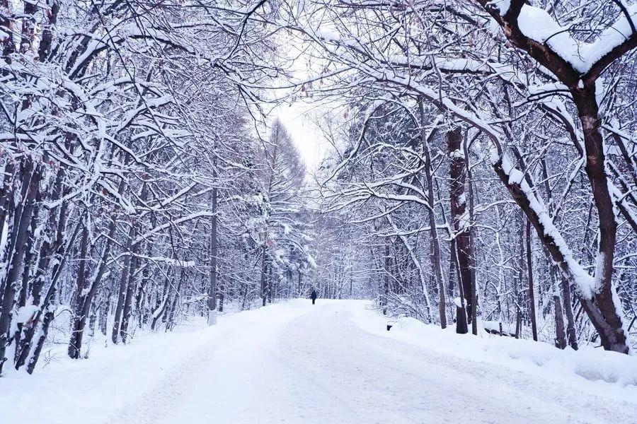 冬季提高跑步效率的5个技巧